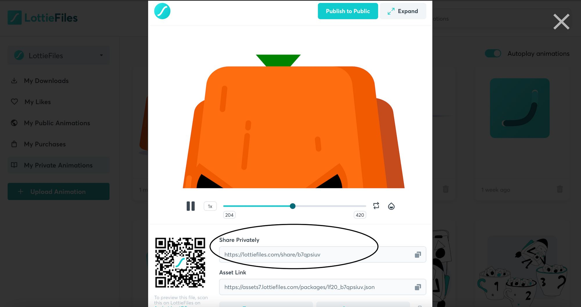 Share animation privately with Private Link